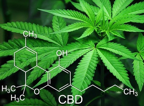 CBD For Overall Health-CBD Helps Pain Anxiety And Depression